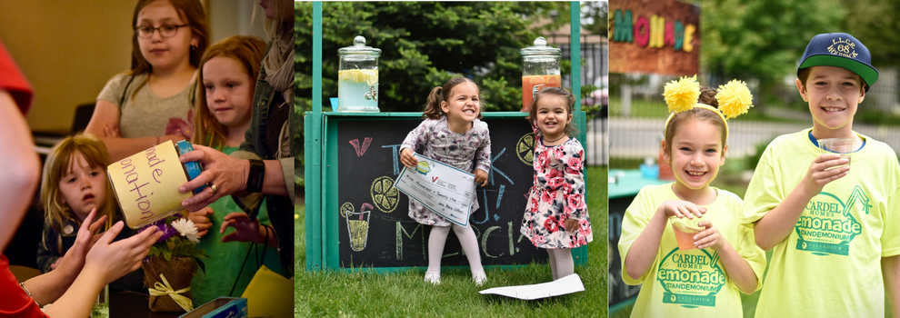 Lemonade Drop Off Banner